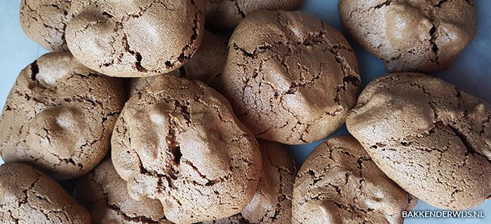 bakken met de cake boss boekreview koekjes