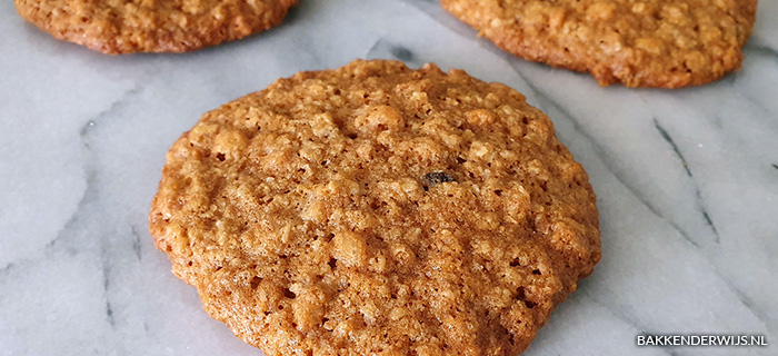 Rice krispies havermout koekjes recept
